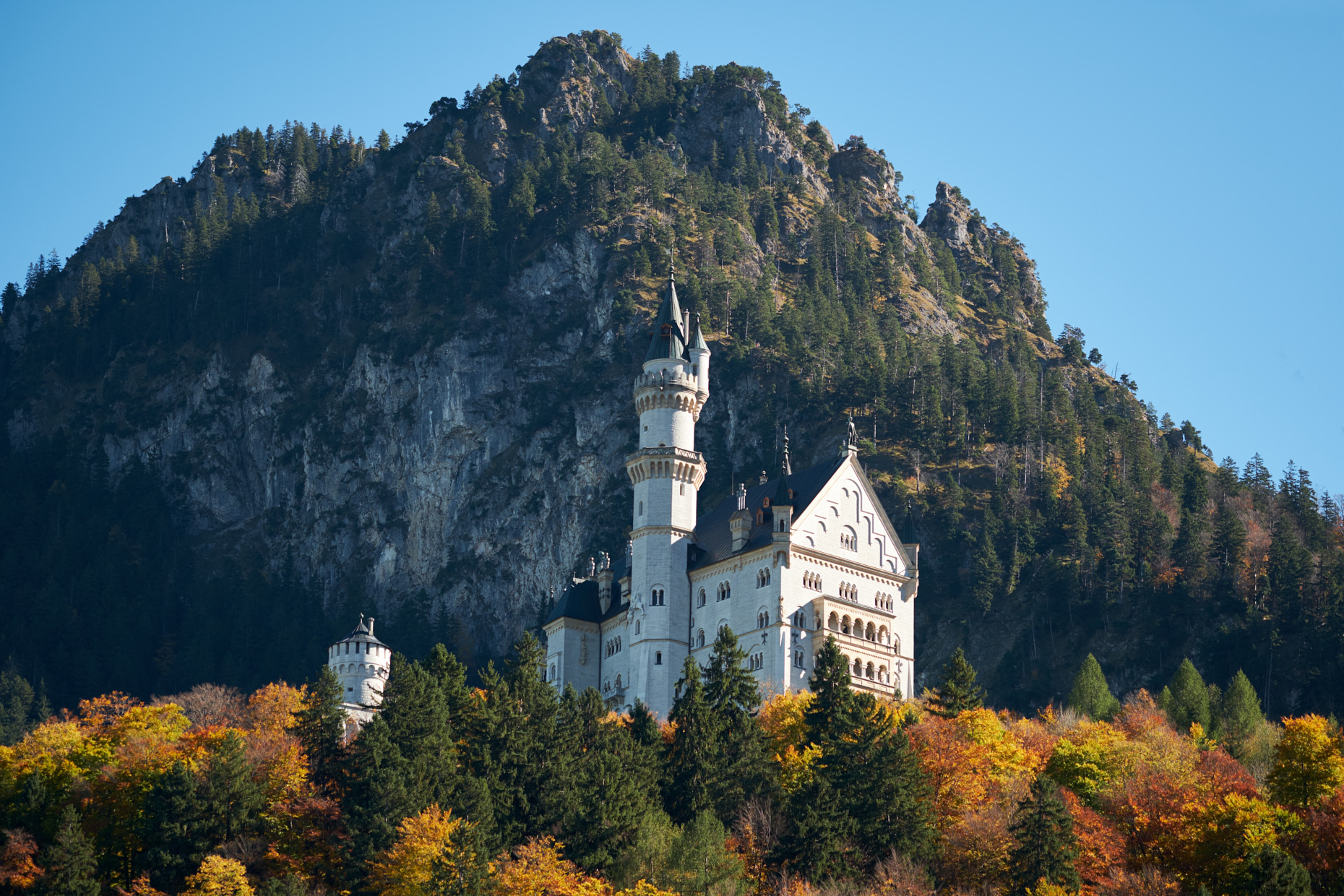 Neuschwanstein castle on mountain side