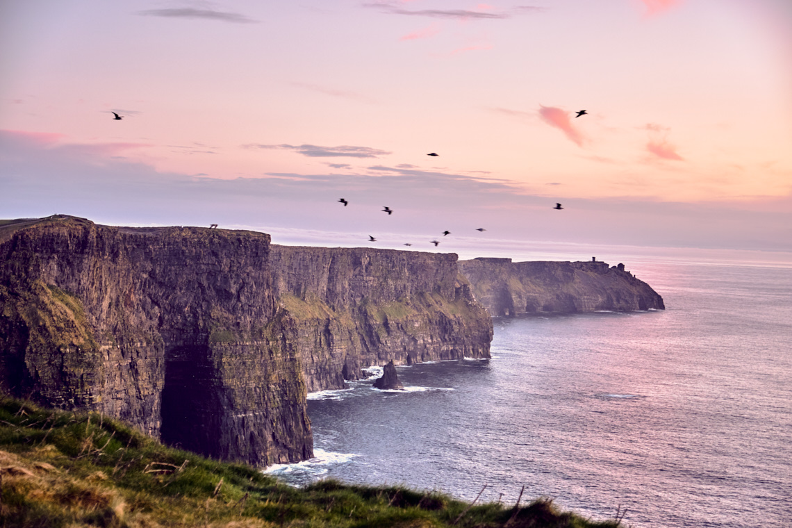 Cliffs of Moher in the evening with birds flying by